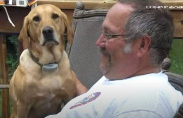 Perrito muere el mismo día que su dueño; su historia se vuelve viral